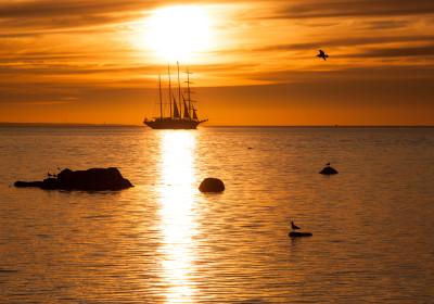 Tallinn sailing experience