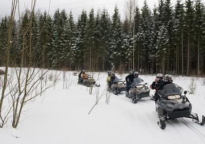Nature safari on a snowmobile