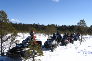 Challenge yourself on a snowmobile safari through the picturesque nature on a fast and powerful machine. The guided adventure drive takes you through a varied winter landscape including forests and fields.