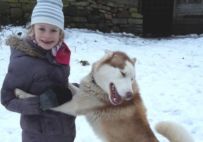 Huskies are friendly & social with kids