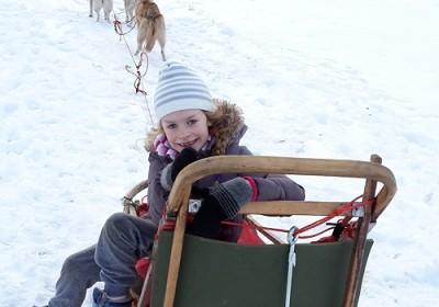 Husky sled ride in Estonian countryside