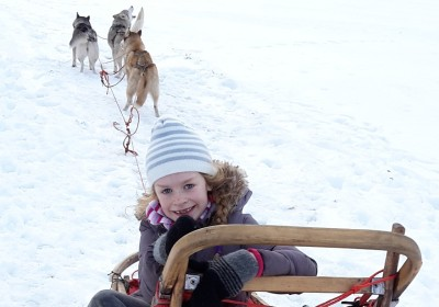 Dog sledding with huskies near Tallinn